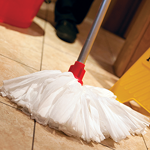 Picture for category Mopping Products
