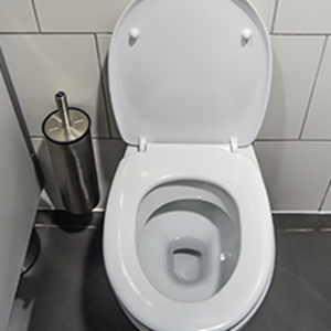 Picture for category Toilet Seat Sanitiser