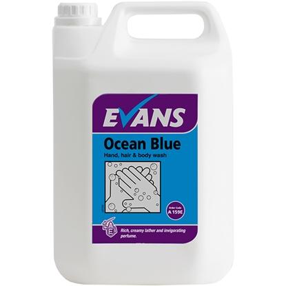 Picture of A159EEV2 Evans Ocean Blue Revitalising Hand, Hair & Body Wash 5 Litre
